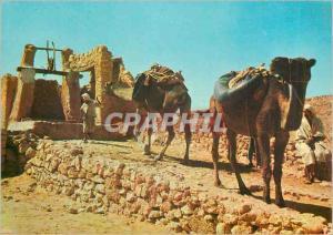 Moderne Karte Sahara Halte au Puits Chameaux