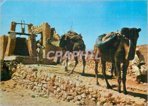 Moderne Karte Sahara Lumiere et Beaute de l'Algerie Halte au Puits Chameaux