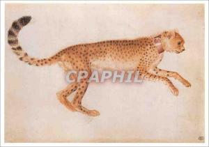 Moderne Karte Guepard Bondissant de Profil vers la Droite et Portant un Collier Rouge Louvre Departement des A