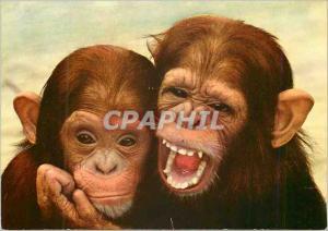 Moderne Karte Singapore Zoo Singe Chimpanze