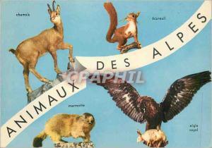 Moderne Karte Animaux des Alpes Chamois Ecureuil Marmotte Aigle royal