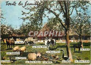 Moderne Karte Toute la Famille Ferme Cheval Vache Ane Donkey Chevre Cochon Poule Oie