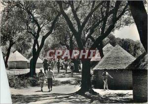 Moderne Karte Palinuro Dans le Village
