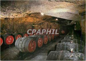 Moderne Karte Au Pays des Vins de la Loire Cave Creusee dans le Coteau