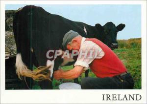 Moderne Karte Ireland Milking Time near Slieve League Co Donegal Vache