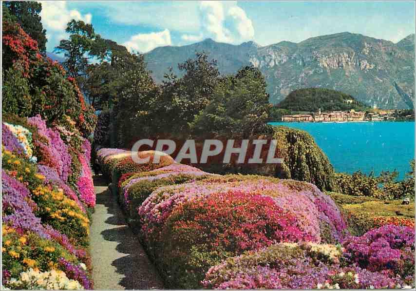 Moderne Karte Lac de Come Villa Carlotta Azalees en Fleur 0