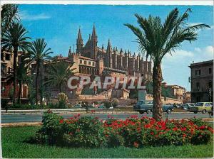 Moderne Karte Palma de Mallorca Catedral y Palacio de la Almudaina