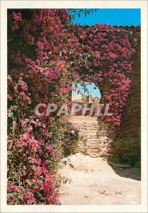 Moderne Karte Bormes les Mimosas (Var) La Cote d'Azur