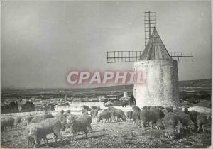 Moderne Karte Fontvieille Le Moulin de A Maudets Les Belles Images de Provence Moutons