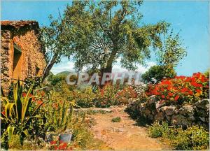 Moderne Karte Paysage Provencal La Cote d'Azur Couleurs et Lumiere de France