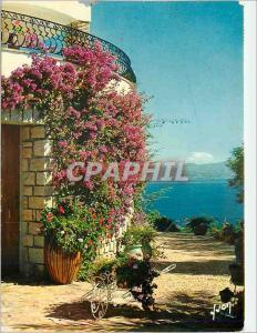 Moderne Karte La Cote d'Azur Les Bougainvillees en fleur Couleurs et Lumiere de France
