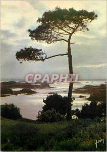 Moderne Karte Ile de Brehat (Cotes du Nord) La Bretagne Couleurs et Lumiere de France Ile des fleurs et des ro