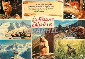 Moderne Karte La Faune Alpine Alpes Renard Ecureuil Bouquetins Chamois Les mouflons Marmotte Faon