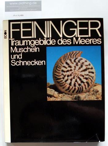 Feininger, Andreas: Traumgebilde des Meeres Muscheln und Schnecken.
