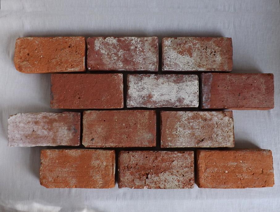 Ziegelboden Bodenplatten Weinkeller Antikziegel alte Mauersteine Backsteine Terrakotta Gewölbekeller 0