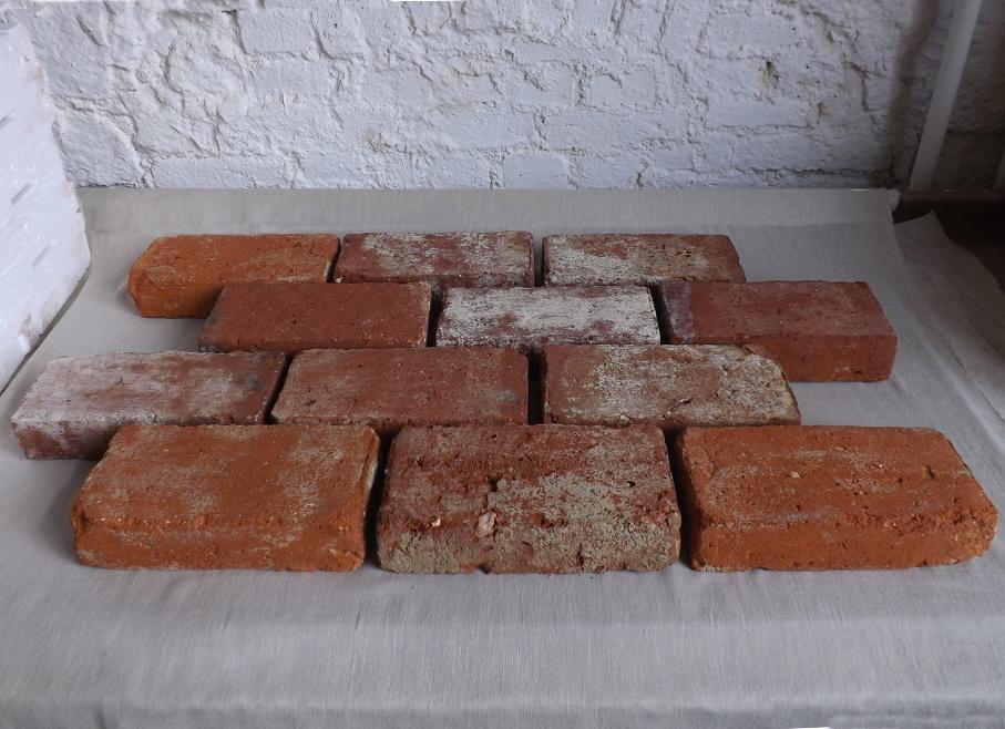 Ziegelboden Bodenplatten Weinkeller Antikziegel alte Mauersteine Backsteine Terrakotta Gewölbekeller 1