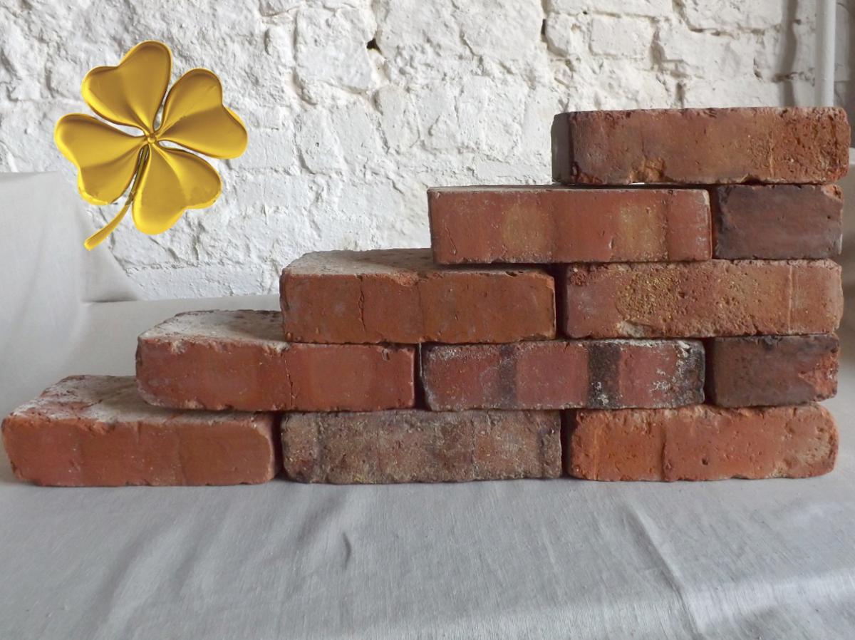 alte Ziegelsteine Klinker Backsteine gebrauchte Mauersteine Antikziegel Verblender historisches Mauerwerk Weinkeller Ruinenmauer ökologische klimaneutral Landhaus rustikal 0