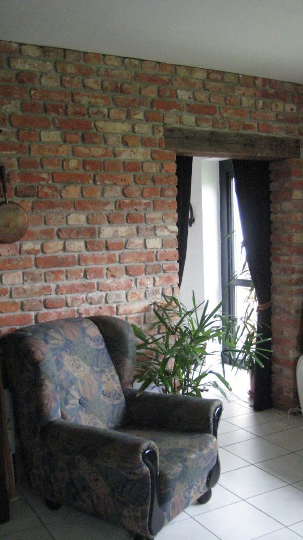 alte Ziegelsteine Klinker Backsteine gebrauchte Mauersteine Antikziegel Verblender historisches Mauerwerk Weinkeller Ruinenmauer ökologische klimaneutral Landhaus rustikal 5