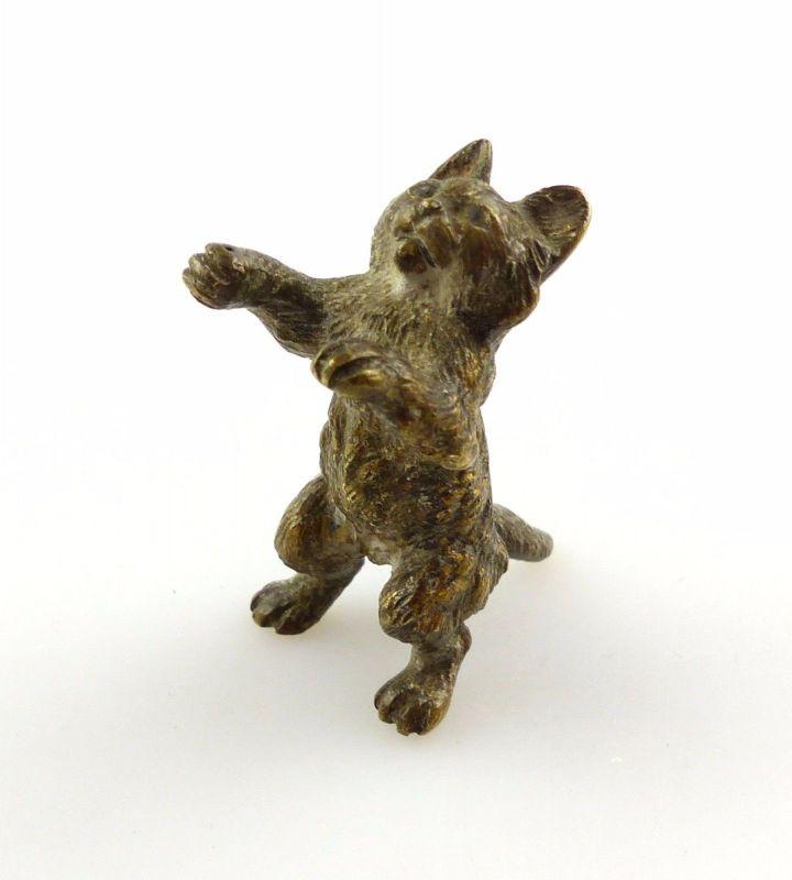 #e5056 Wiener Bronze Tier Kater um 1900