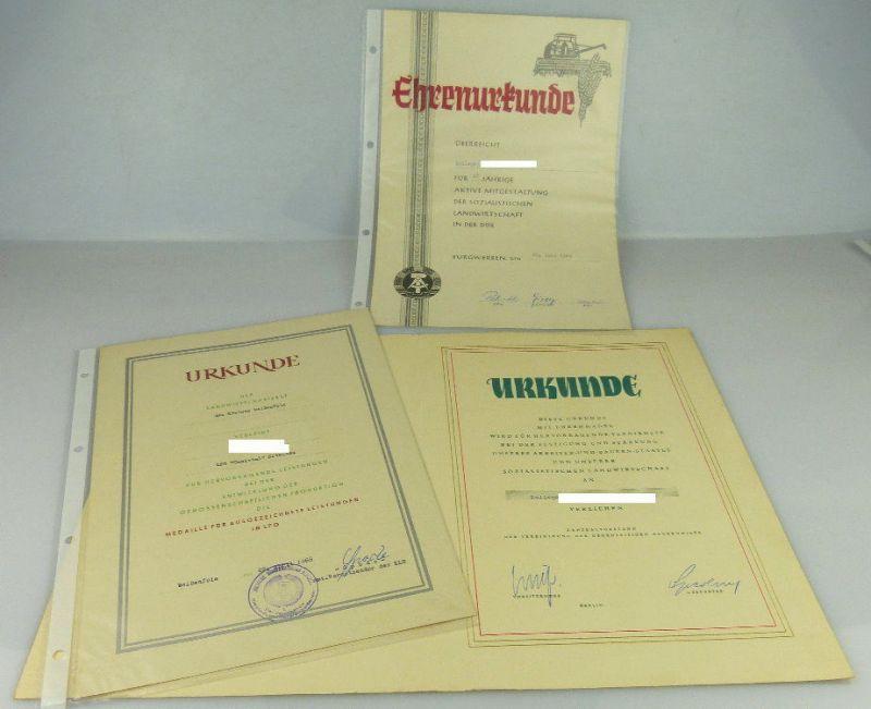 3 Urkunden: Ehrenurkunde 25jährige Mitgestaltung soz. Landwirtschaft, Orden2003