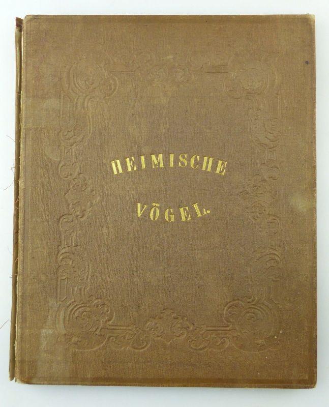 #e8740 Altes Buch von 1870 Heimische Vögel von Hugo Bürkner mit 50 Holzschnitten