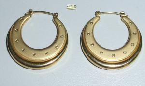 Creolen aus 333er Gold (da4205)