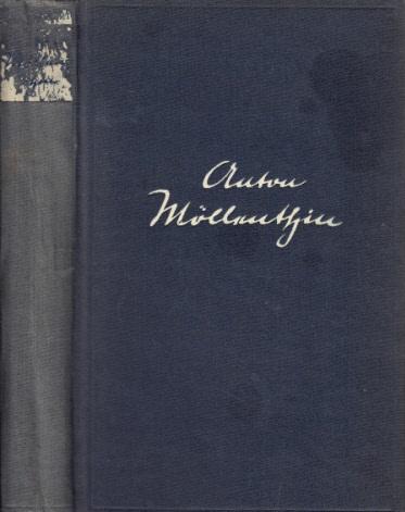 Anton Möllenthin - Geschichte eines Arbeiters