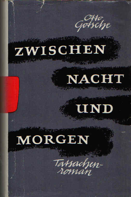 Zwischen Nacht und Morgen Roman