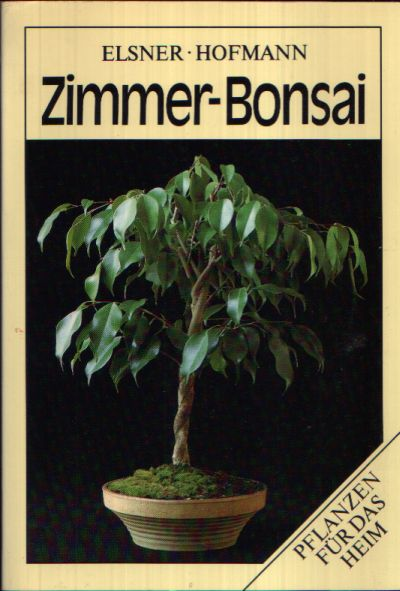 Zimmer-Bonsai Pflanzen für das Heim