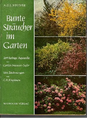 Bunte Sträucher im Garten Eine Enzyklopädie für Gartenfreunde