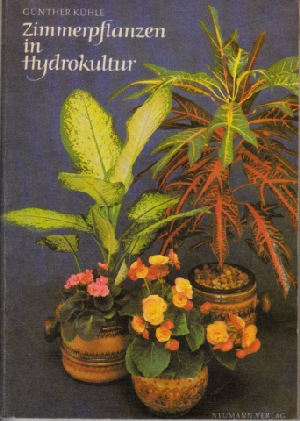Zimmerpflanzen in Hydrokultur