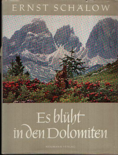 Es blüht in den Dolomiten Mit Federzeichnungen von Kurt Schulze