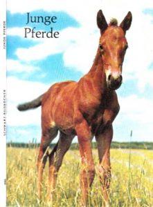 Junge Pferde mit 40 BIldtafeln