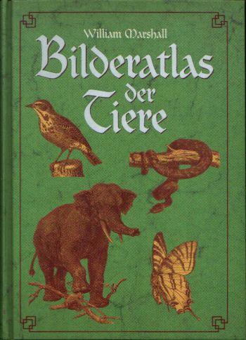 Bilderatlas der Tiere Bilder-Atlas zur Zoologie der Säugetiere - Zoologie der Vögel
