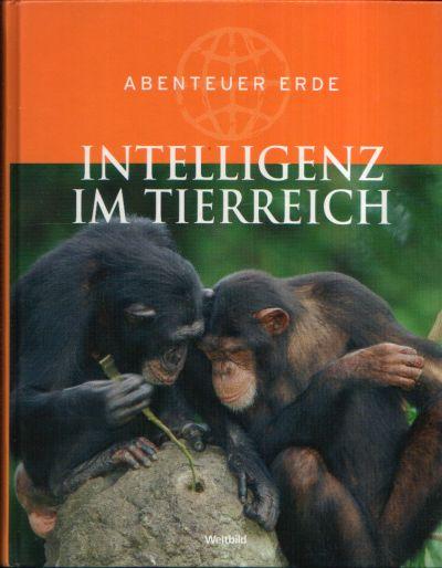 Intelligenz im Tierreich Abenteuer Erde