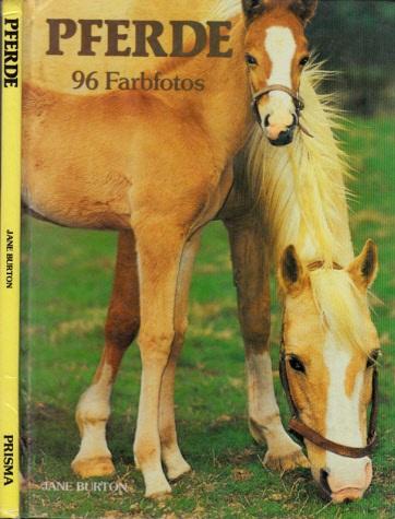 Pferde 26 Farbfotos
