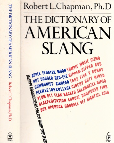 A New Dictionary of American Slang