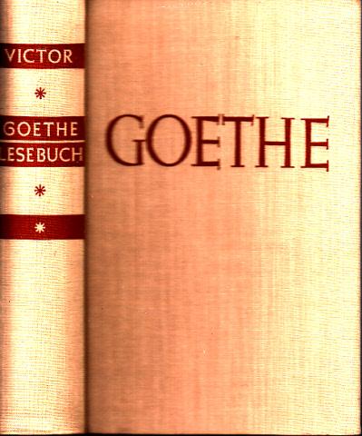 Goethe - Ein Lesebuch für unsere Zeit