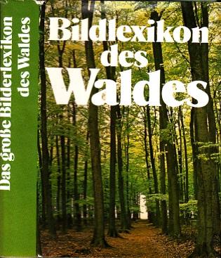 Das große Bilderlexikon des Waldes