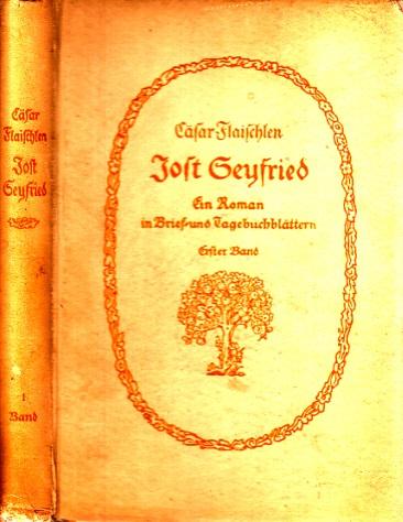 Jost Seyfried - Ein Roman in Brief- und Tagebuchblättern - erster Band