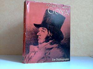 Goya - Eine Bildhiographie