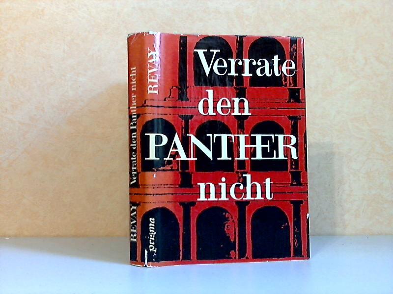 Verrate den Panther nicht - Kulturgeschichtlicher Roman