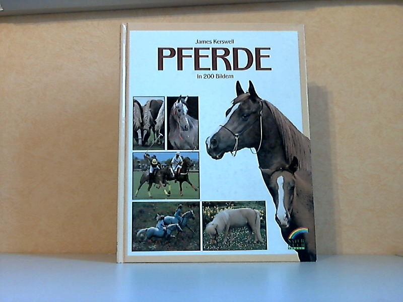 Pferde in 200 Bildern