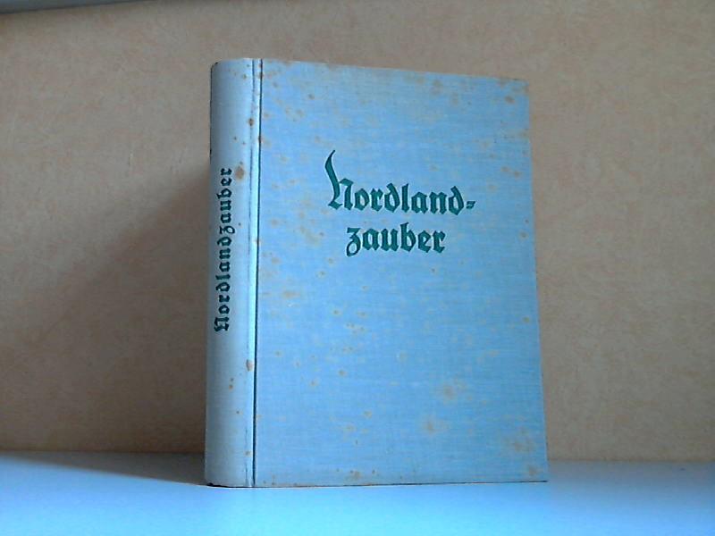 Nordlandzauber - Eine frohe Fahrt durch Dänemark, Norwegen und Schweden mit 126 Bildern in Kupfertiefdruck