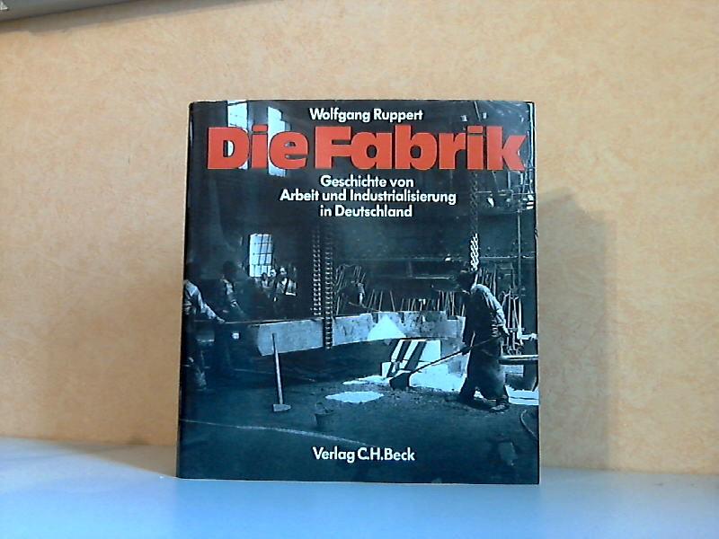 Die Fabrik - Geschichte von Arbeit und Industrialisierung in Deutschland Sonderauflage für die Industriegewerkschaft Bergbau und Energie