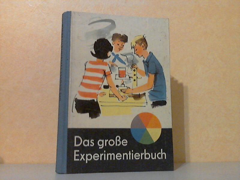 Das große Experimentierbuch
