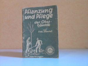 Pflanzung und Pflege der Obstbäume Lehrmeister-Bücherei Nr. 116/117