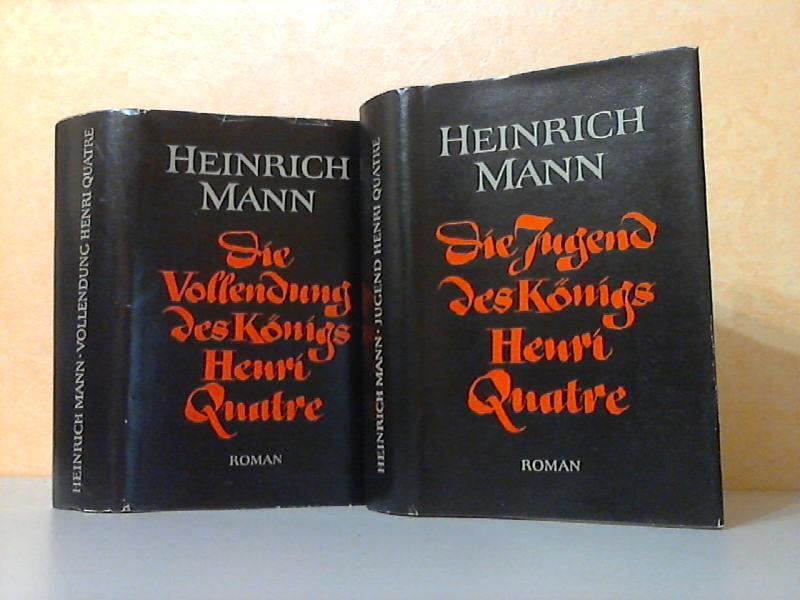Die Jugend des Königs Henri Quatre - Die Vollendung des Königs Henri Quatre 2 Bücher