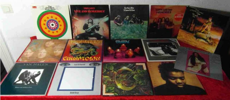 15 Langspielplatten Rock/Pop Vinylsammlung DEEP PURPLE THIN LIZZY TEN YEARS AFTE