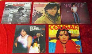 5 Langspielplatten JOHN COUGAR MELLENCAMP  - Vinylsammlung -